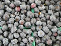 juicy blueberries