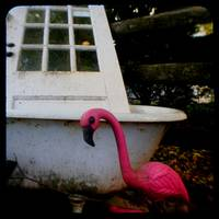 door tub flamingo ttv