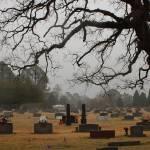 """""""Misty Cemetery 1"""" by spookyrach"""