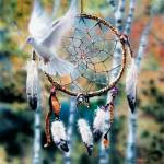 """Dreamcatcher"" by davidpenfound"