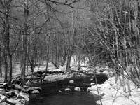 Connecticut Stream in Winter