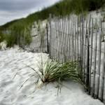 """""""Second Beach"""" by metzgarpaul"""