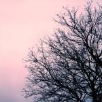 """""""pink sky"""" by ursyka"""