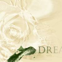 an ivory romantic dream Art Prints & Posters by Martina Ute Rudolf