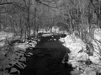 Creek in the Snow - B&W