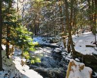 Grayville Falls in Winter