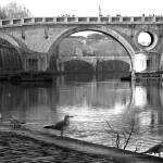 """Roma - Ponte Sisto"" by gengish"