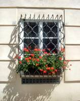 Prague Window