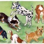 """Nine Dogs Barking"" by clovia"