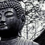 """Buddha"" by kmharveigh"