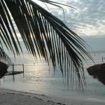 """""""Oranestaajd, Aruba"""" by davezolismedia"""