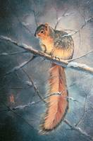 WINTER SQUIRREL by SHARON SHARPE
