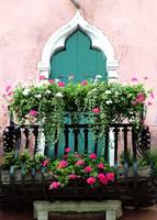 The Green Ornate Door with Geraniums