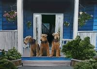 3 Airedale on porch