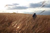 Tony in the Tallgrass