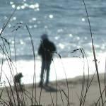 """Cape Cod Beach View"" by MarksClickArt"