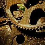 """The Cogs of Gold Rush"" by CedricTheCat"