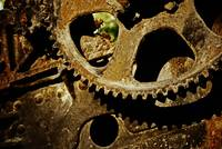 The Cogs of Gold Rush