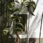"""Mexican window"" by Artsyroom"