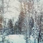 """Snow in Alta"" by Artsyroom"