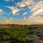 """Dinosaur Provincial Park, Alberta"" by jamesdavison"