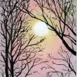 """""""Winter Sky"""" by splynch"""