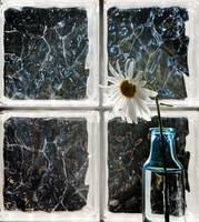 The Glass Block Window