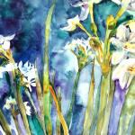 """Paperwhites Teal"" by schulmanart"