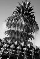 Pineapple Fountain No. 3, Charleston, SC