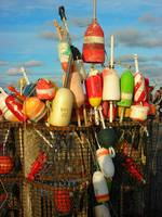 Buoys on the Bay