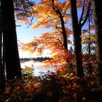 """""""Pretty lake in Lake Superior State Forest"""" by RichardBaumer"""