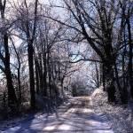 """Sharon Hollow Icy Road"" by RichardBaumer"