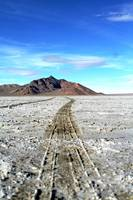 Salt Flat Tiretrack