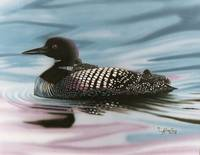 Baby Blue-Mother Loon with Young