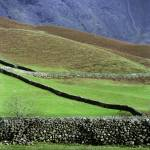"""Drystone walls, Wasdale Fell"" by johnkiely"