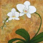"""10x10-orchid"" by BoboJunket"