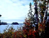 King's Lake Campground - late October
