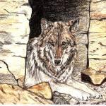 """""""Healing Wolf"""" by wolfsoul"""
