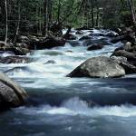 """Pidgeon River - Great Smoky Mountains"" by RichardBaumer"