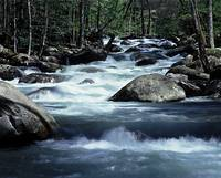 Pidgeon River - Great Smoky Mountains