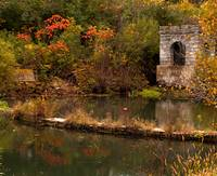 Coldwater Spring in Fall