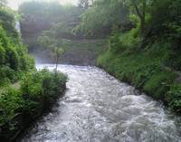 Minnehaha Creek After Rain