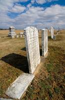 marble gravestones form the 1800's