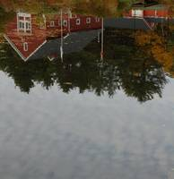 Reflection of the Farm