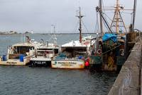 Fishing Fleet Scituate