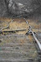 Abandoned Rail, end of the line...