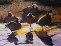 African White-Faced Whistling Ducks Watercolor Pai