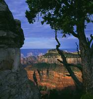 Natures Window, Grand Canyon