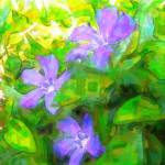 """""""Periwinkle Trio"""" by Kerry"""