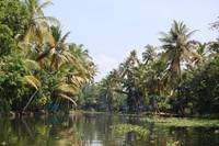 Backwaters Galore
